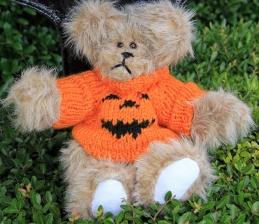 sweater bear orange pumpkin (2) (640x555)